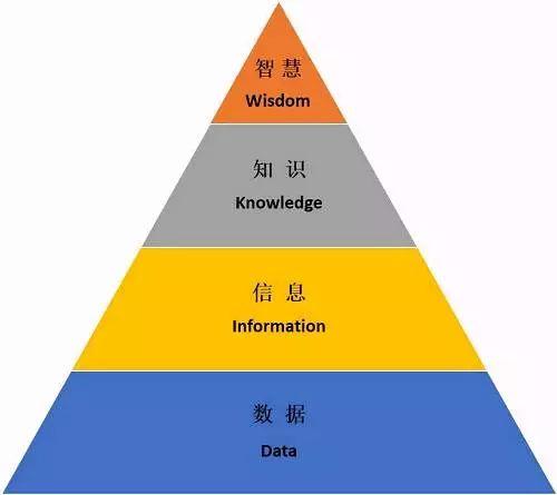 未来春藤的价值体系和商业逻辑
